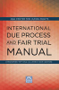 Cover of International Due Process and Fair Trial Manual