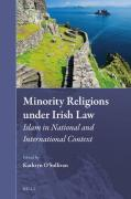 Cover of Minority Religions under Irish Law: Islam in National and International Context