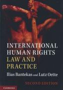 Cover of International Human Rights Law and Practice