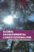 Cover of Global Environmental Constitutionalism: Implications for Present and Future Generations