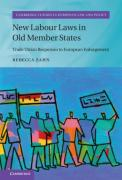 Cover of New Labour Laws in Old Member States: Trade Union Responses to European Enlargement