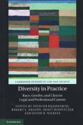 Cover of Diversity in Practice: Race, Gender, and Class in Legal and Professional Careers