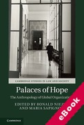 Cover of Palaces of Hope: The Anthropology of Global Organizations (eBook)