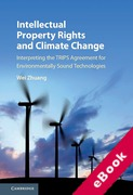 Cover of Intellectual Property Rights and Climate Change: Interpreting the Trips Agreement for Environmentally Sound Technologies (eBook)