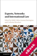 Cover of Experts, Networks and International Law (eBook)