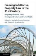 Cover of Framing Intellectual Property Law in the 21st Century: Integrating Incentives, Trade, Development, Culture, and Human Rights