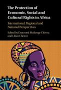 Cover of The Protection of Economic, Social and Cultural Rights in Africa: International, Regional and National Perspectives