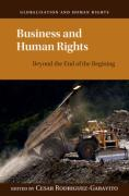 Cover of Business and Human Rights: Beyond the End of the Beginning