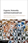 Cover of Experts, Networks and International Law