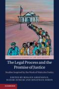 Cover of The Legal Process and the Promise of Justice: Studies Inspired by the Work of Malcolm Feeley