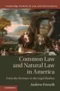 Cover of Common Law and Natural Law in America: From the Puritans to the Legal Realists