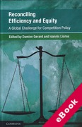 Cover of Reconciling Efficiency and Equity: A Global Challenge for Competition Law? (eBook)