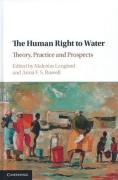 Cover of The Human Right to Water: Theory, Practice, and Prospects