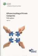 Cover of Efficent Auditing of Private Companies