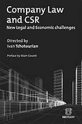 Cover of Company Law and CSR: New Legal and Economic Challenges