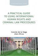 Cover of A Practical Guide to Using International Human Rights and Criminal Law Procedures