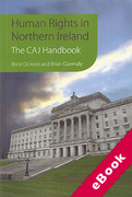Cover of Human Rights in Northern Ireland: The CAJ Handbook (eBook)