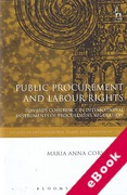 Cover of Public Procurement and Labour Rights: Towards Coherence in International Instruments of Procurement Regulation (eBook)