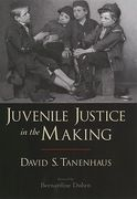 Cover of Juvenile Justice in the Making