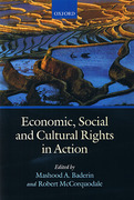 Cover of Economic, Social, and Cultural Rights in Action