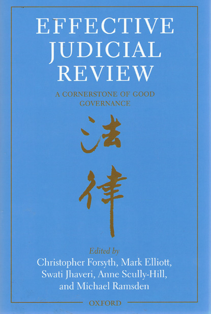 essays on judicial review