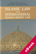 Cover of Islamic Laws and International Human Rights Law (eBook)