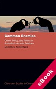 Cover of Common Enemies: Crime, Policy, and Politics in Australia-Indonesia Relations (eBook)