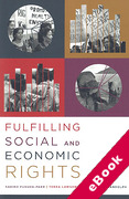 Cover of Fulfilling Social and Economic Rights (eBook)