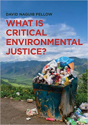Cover of What is Critical Environmental Justice?