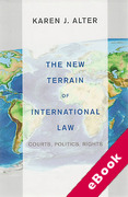 Cover of The New Terrain of International Law: Courts, Politics, Rights (eBook)