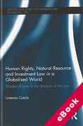 Cover of Human Rights, Natural Resource and Investment Law in a Globalised World: Shades of Grey in the Shadow of the Law (eBook)