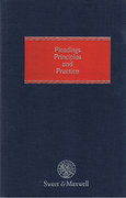 Cover of Pleadings: Principles and Practice