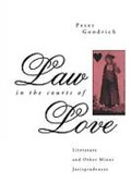 Cover of Law in the Courts of Love: Literature and Other Minor Jurisprudences