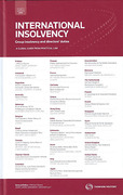 Cover of International Insolvency: Group Insolvency and Directors' Duties